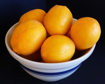 A Bowl of Meyer Lemons (c) jfhaugen