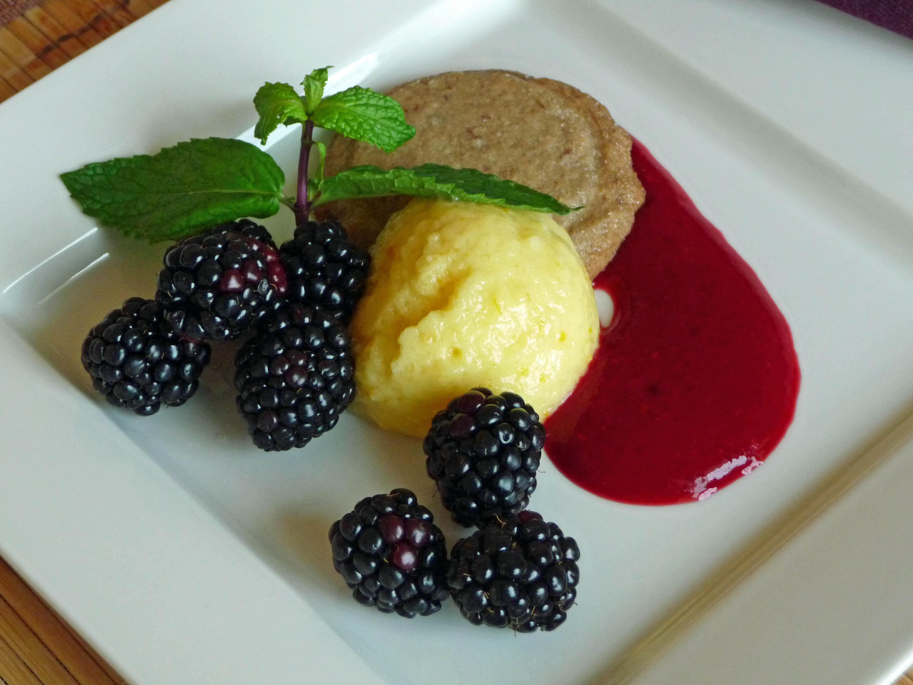 Meyer Lemon Curd, Maple Pecan Shortbread, Coulis, Blackberries (c) jfhaugen